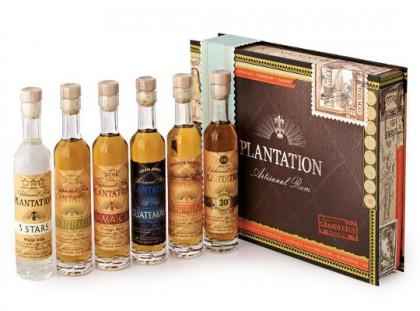 plantation coffre 6 x 10