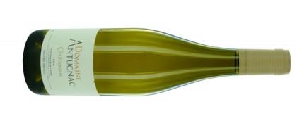 Chardonnay-antugnac