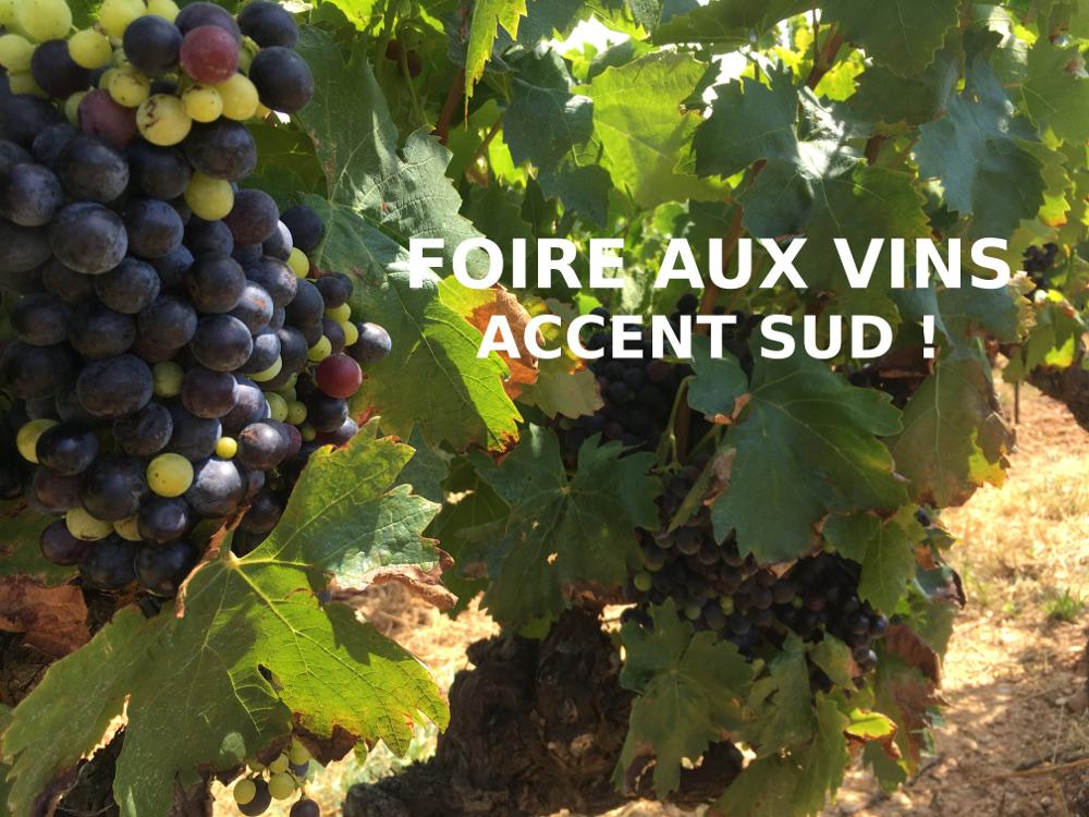 photo foire vin